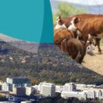 Announcing Australian Regional Development Conference